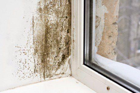 Como prevenir las humedades por condensación