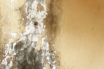 Humedad por condensación en un edificio: Cómo controlarla