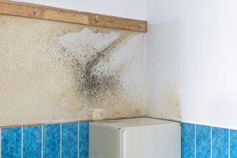 ¿Tienes humedades en la pared? CUIDA TU SALUD