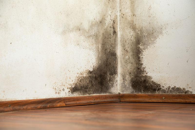 Problemas de la humedad por condensaci n aislantes - Como solucionar problemas de condensacion en una vivienda ...