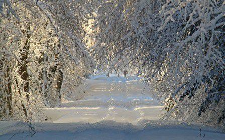 ¿Cómo aislar una casa, habitación o pared del frío?